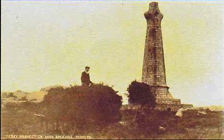 carn brea monument with cart of ferns